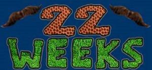 22 weeks logo